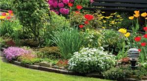 Garden Design Services London