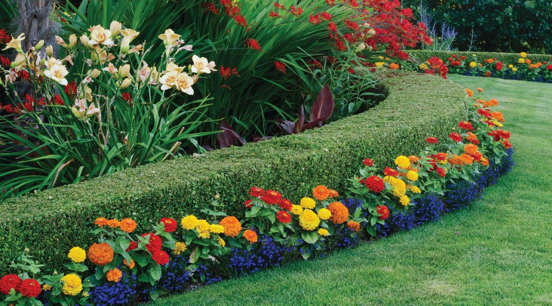 general-gardening